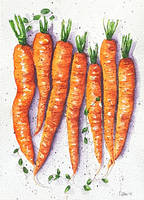 Baby carrots by rougealizarine