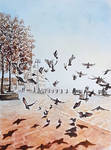 Doves in Ortakoy by rougealizarine