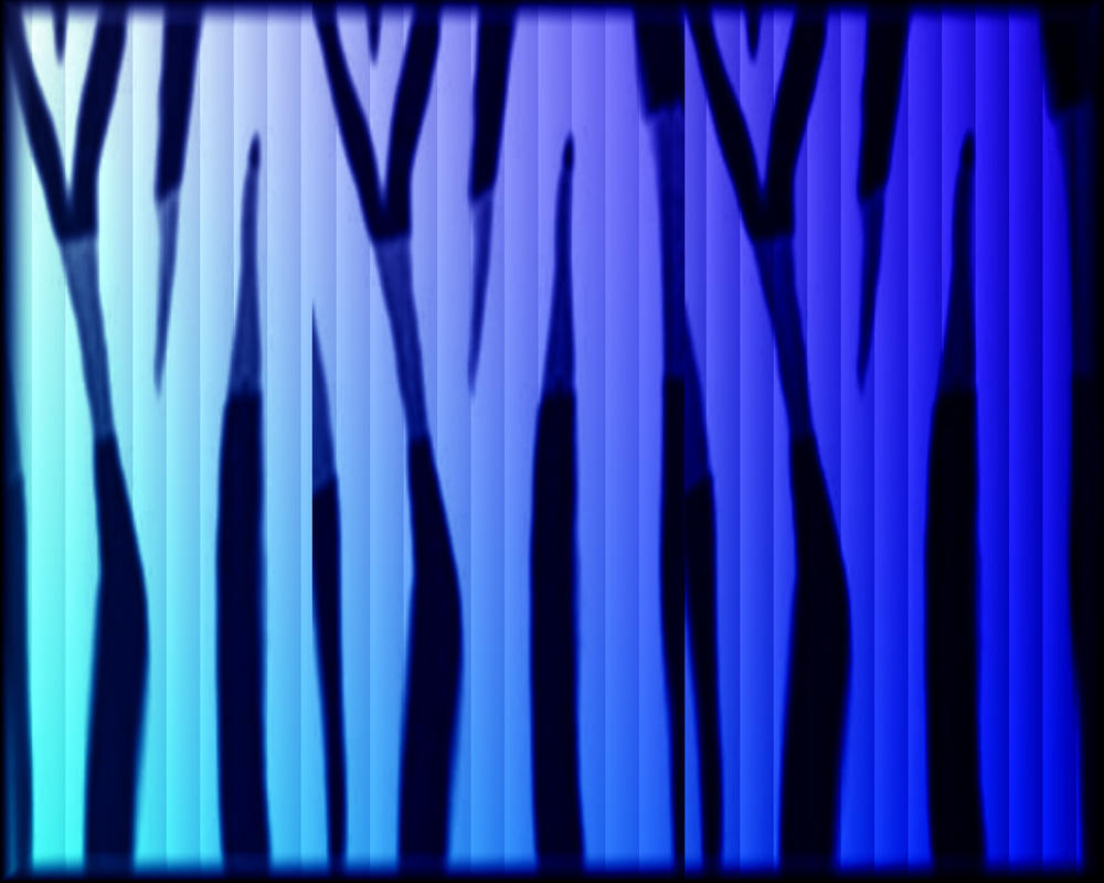 Zebra Blue by welshdragon