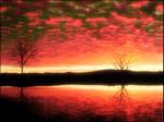 Reflective Oasis 5