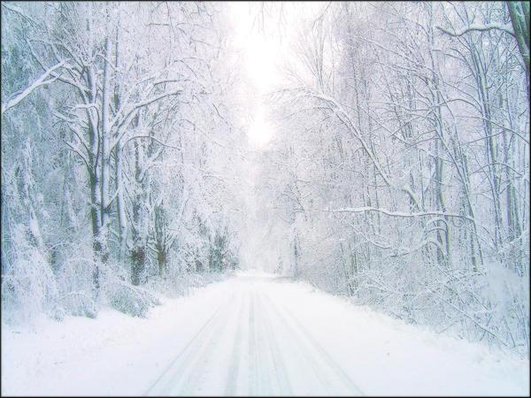 Leaving Winter Behind by welshdragon
