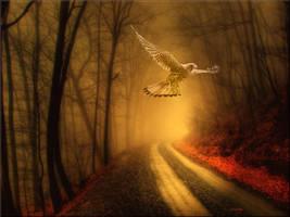 Flight Of Fantasy by welshdragon