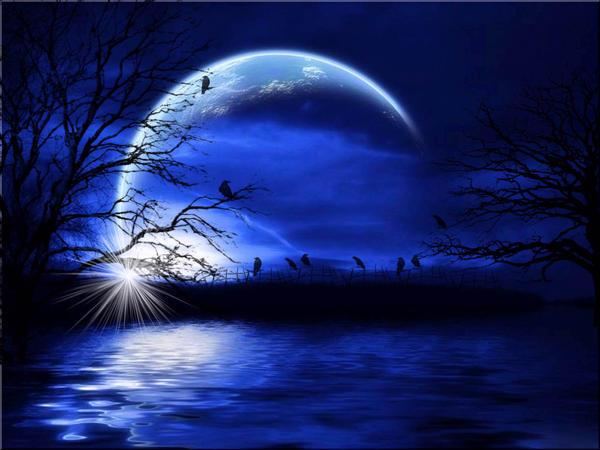 Night Fantasy by welshdragon