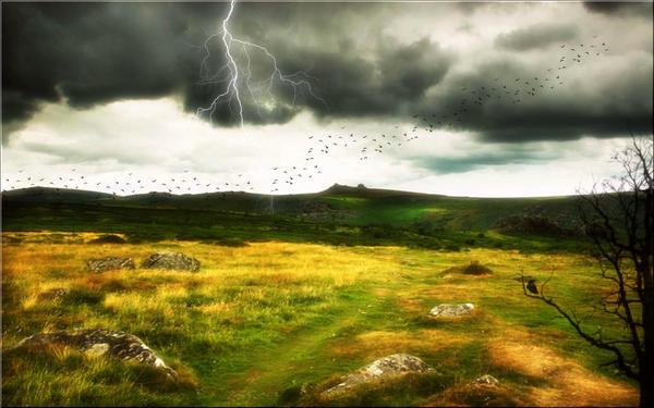 Bleak Moor by welshdragon