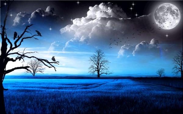 Topaz Sky by welshdragon