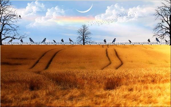 Strange Days by welshdragon