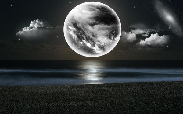 Moonlight Bliss 4 by welshdragon