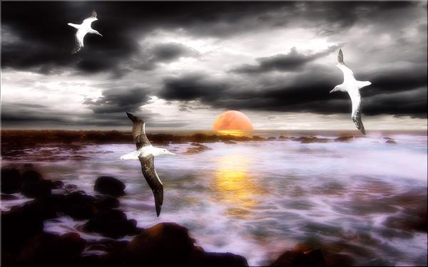 Descending Storm by welshdragon