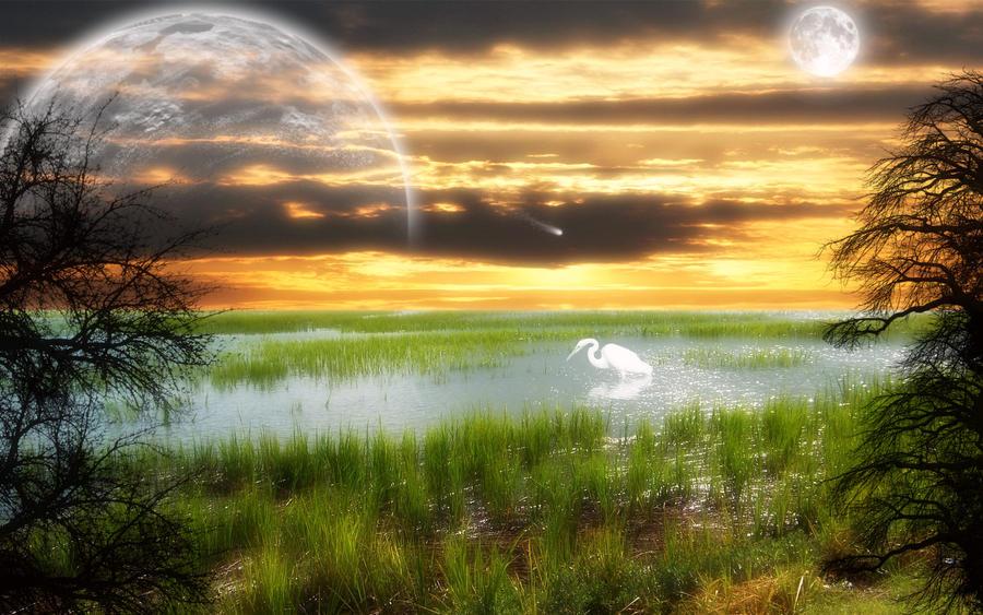 Sunset Symphony by welshdragon