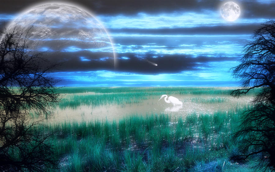 Sunset Symphony 2 by welshdragon