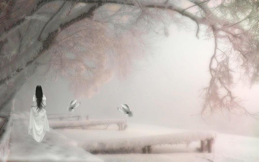 Winter Dreams 4 by welshdragon