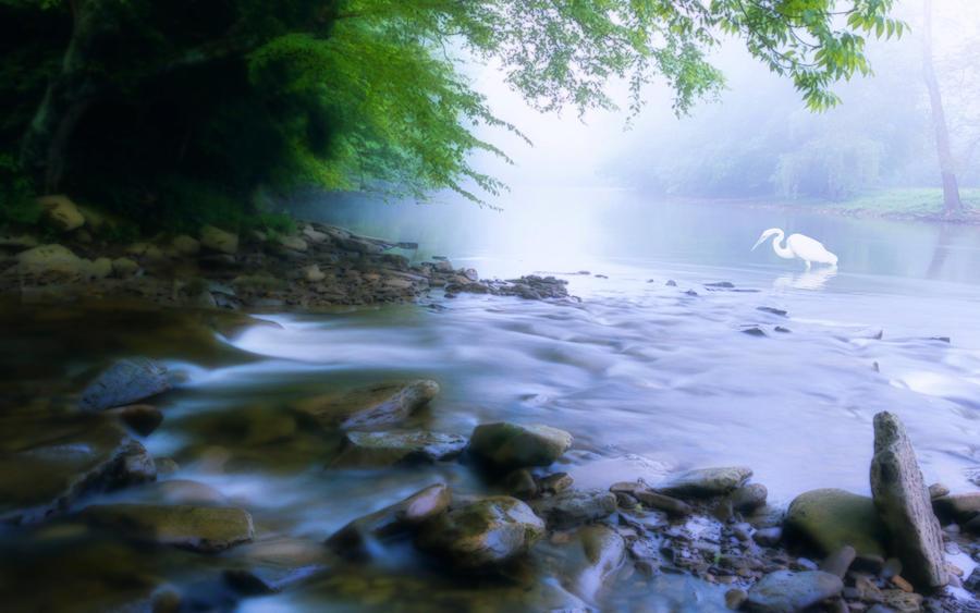 River Tales by welshdragon