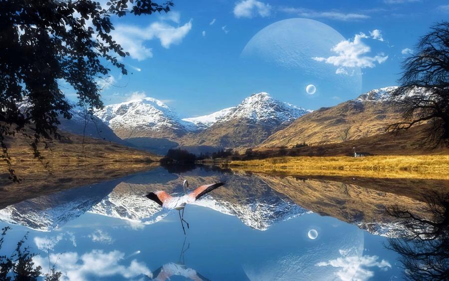 Winterland by welshdragon