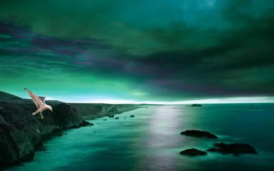 The Coast 8