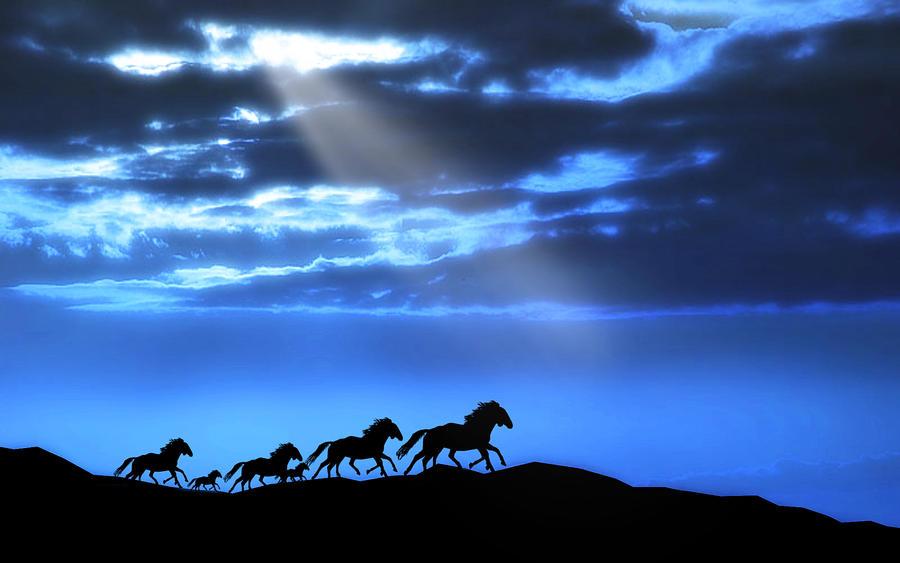 Runaway Horses 2 by welshdragon