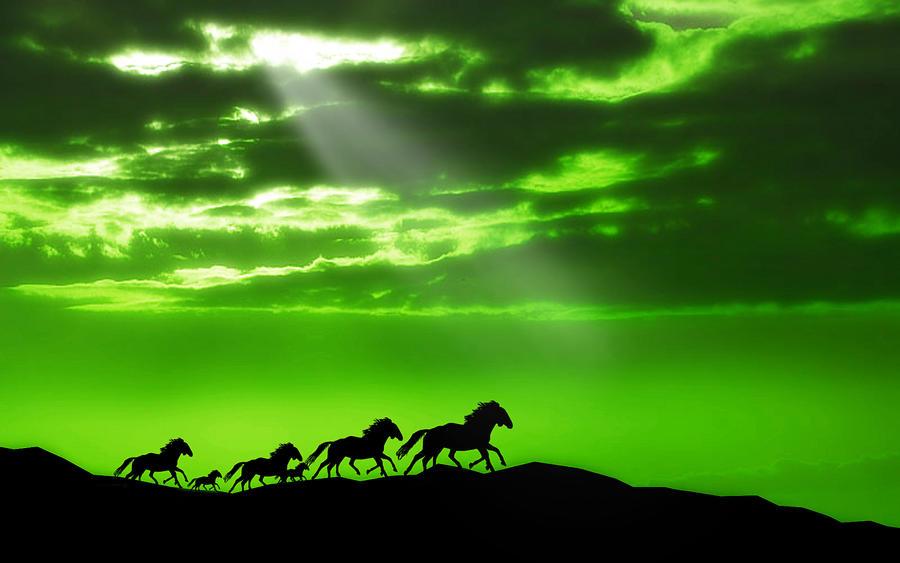 Runaway Horses 4 by welshdragon