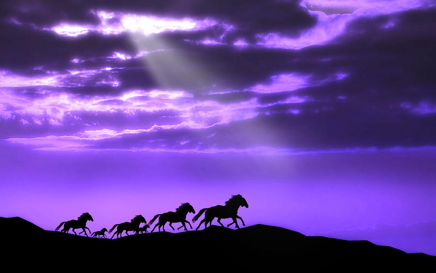 Runaway Horses 5 by welshdragon