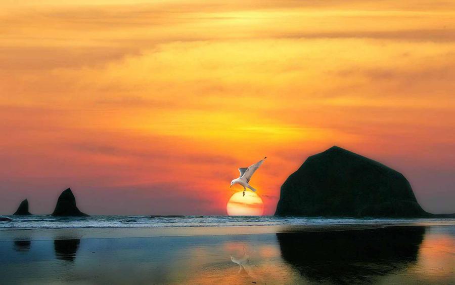 Evening Sun by welshdragon