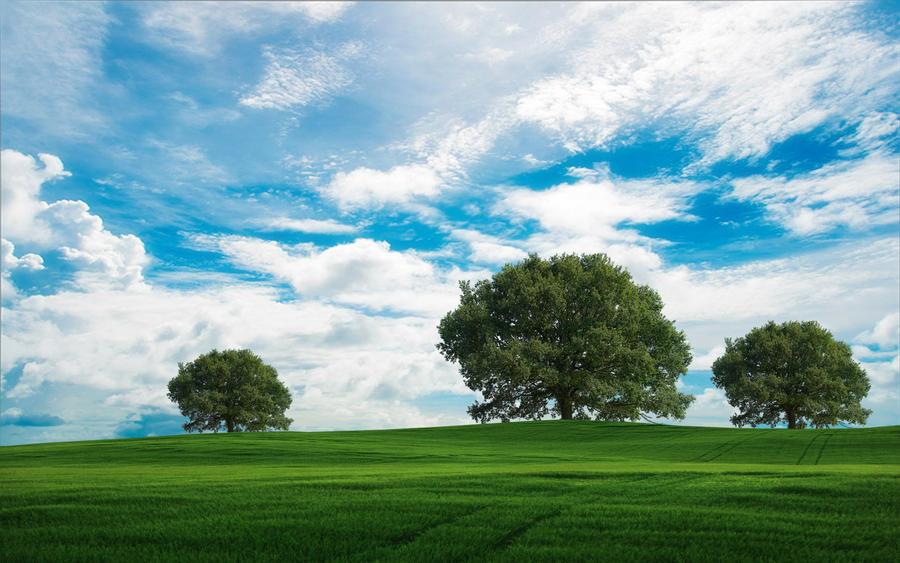 Goodbye Blue Sky by welshdragon