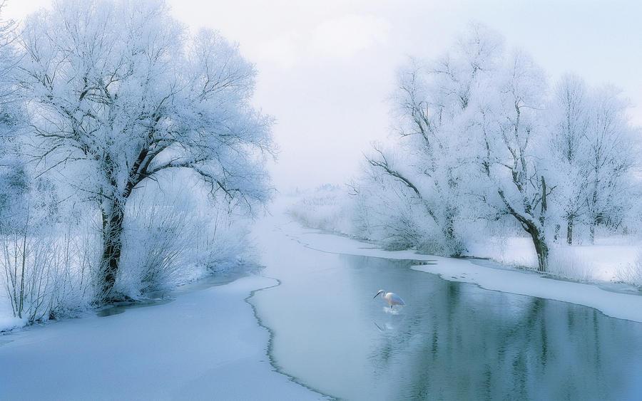 Winters End by welshdragon