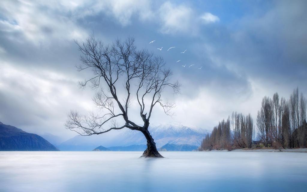 Winters Lament by welshdragon