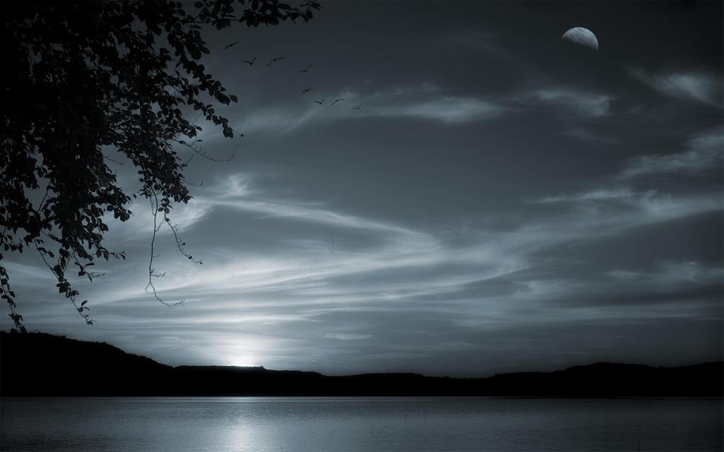 Dawn Rising 2 by welshdragon