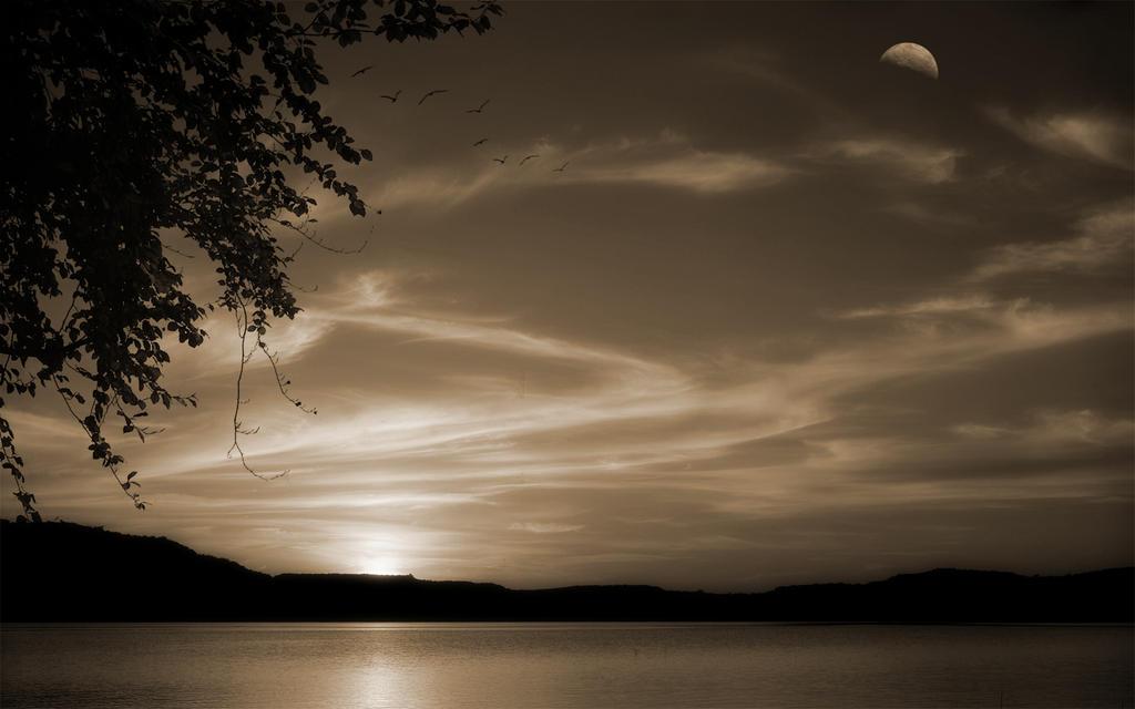 Dawn Rising 3 by welshdragon