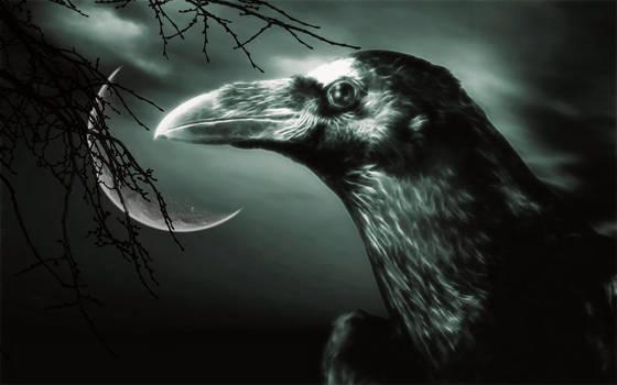 The Raven 5 by welshdragon