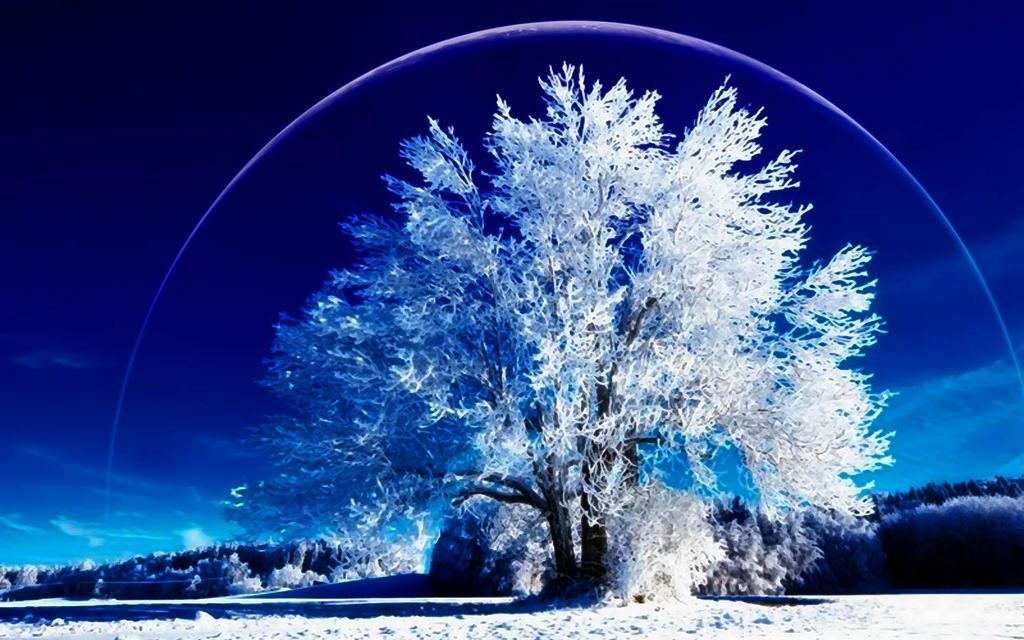 A Winter's Dream by welshdragon