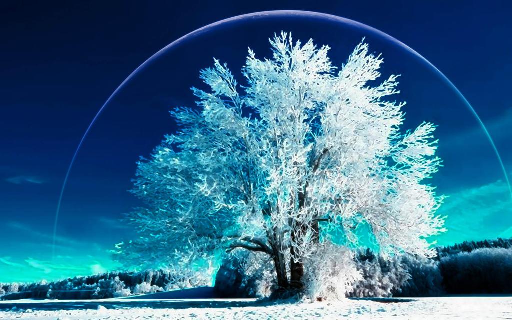 A Winter's Dream 7 by welshdragon