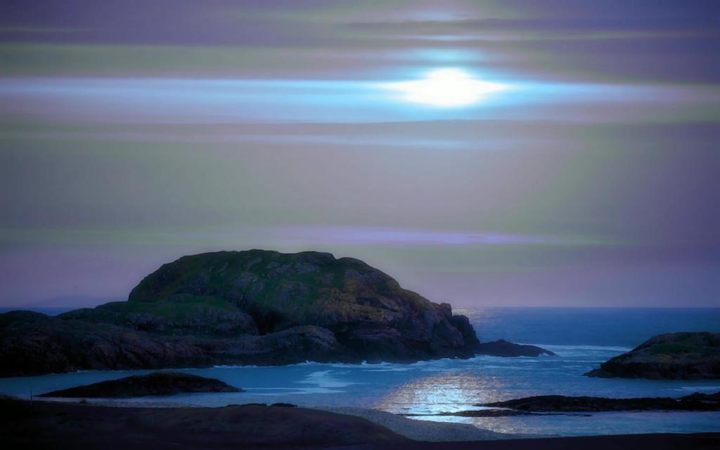 Isles Of Farne 4 by welshdragon