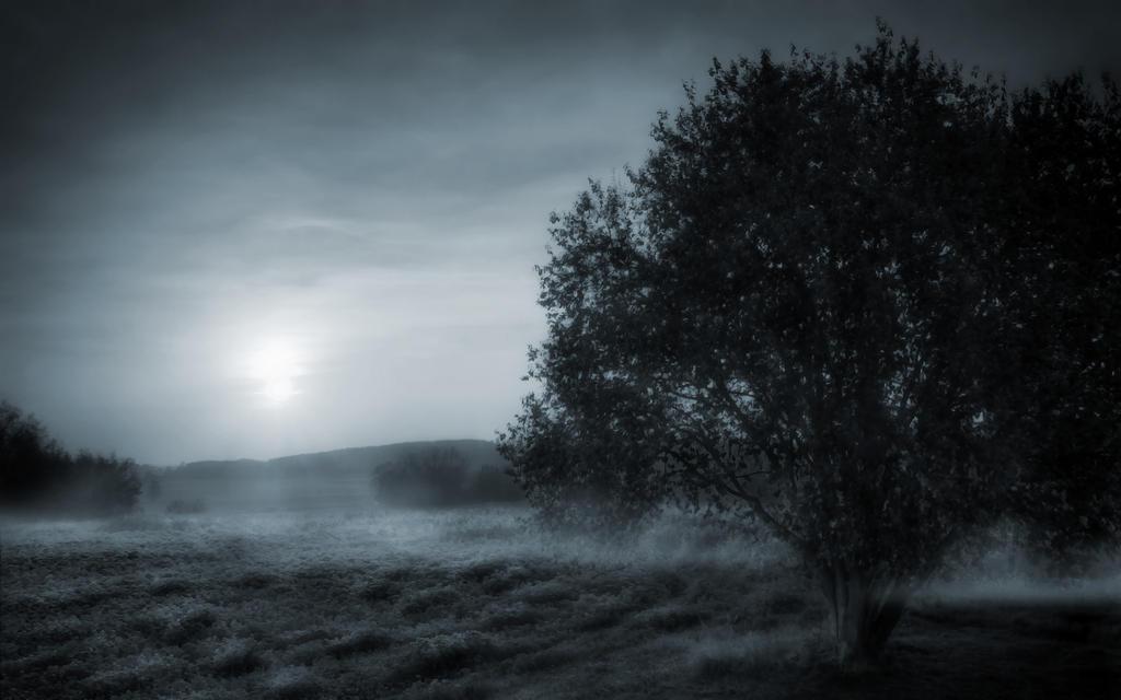 Hear The Silence 8 by welshdragon