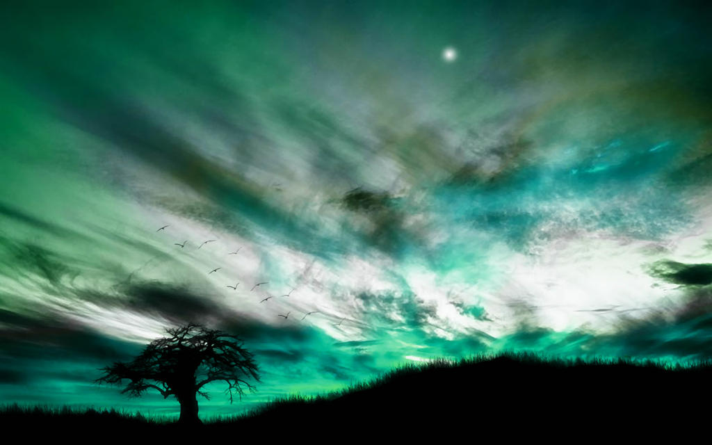 Open Sky 8 by welshdragon