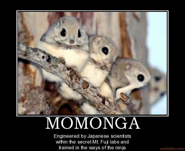Momonga_by_Dragara.jpg