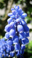 All blue by Andrei-Azanfirei