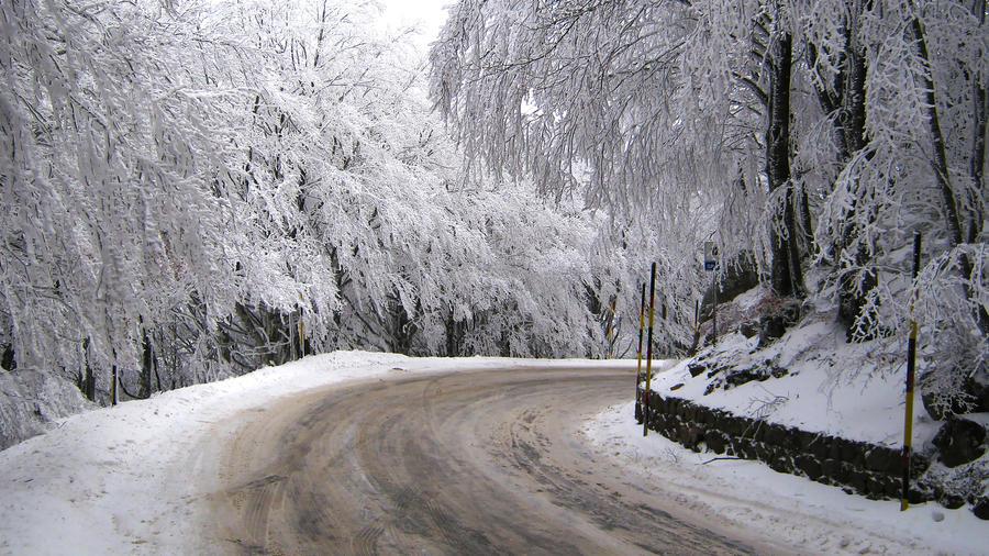 Winter Road by Andrei-Azanfirei