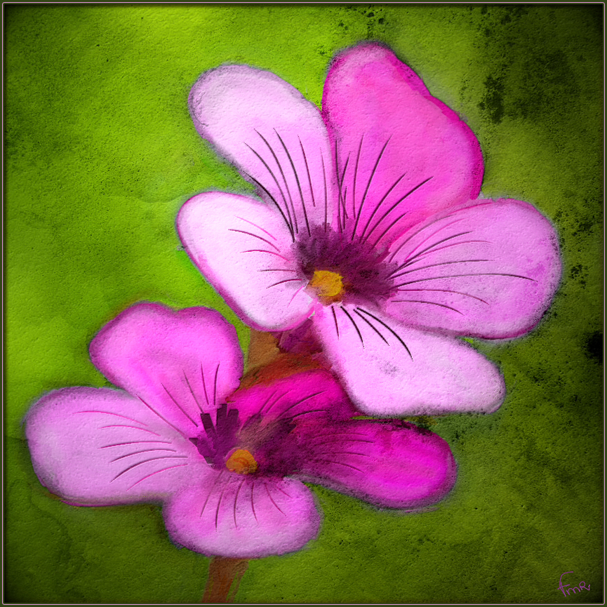 Simple flowers by fmr0 on deviantart for Simple easy paintings