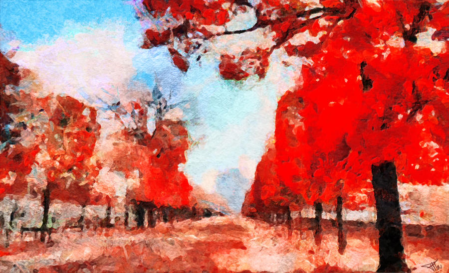 Jardin des Tuileries by fmr0