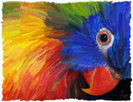 a Bird of Many Colours by fmr0