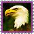 Icon - Eagle