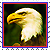Icon - Eagle by fmr0