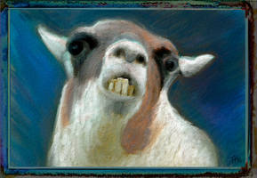 the Hallucinated Llama by fmr0