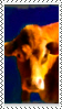 Stamp - Cow by fmr0