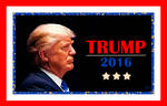 Banner - Trump 2016