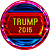 Icon - Trump 2016 by fmr0