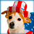 Icon - Patriotic Dog