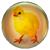 Icon - Chick