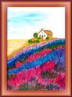 Lavender Fields by fmr0