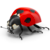 Icon - Ladybird by fmr0