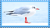 Stamp - Seagull by fmr0